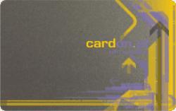 srebrne karty plastikowe
